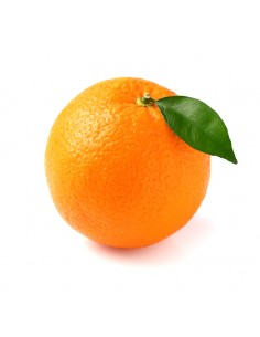 orange_citrus_fruit_isolated.jpg