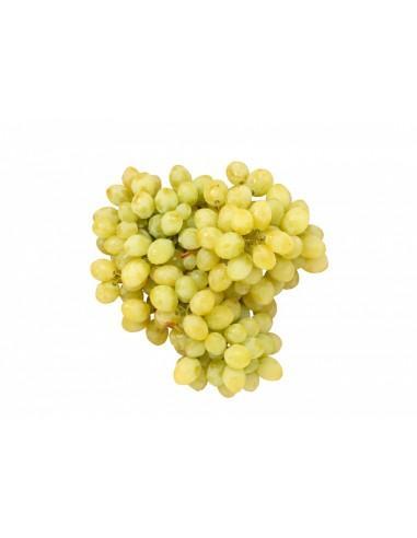 raisin sans pepin blanc.jpg