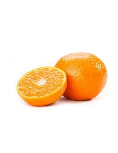 clementine-orri.jpg