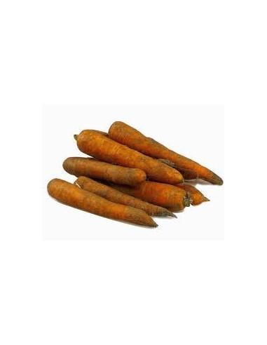 carottes-de-sable.jpg